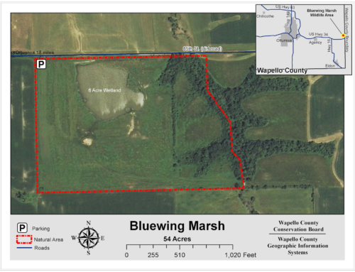 Bluewing Marsh Map
